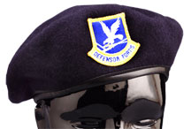 SECURITY FORCES BERET INCLUDES Enlisted Flash