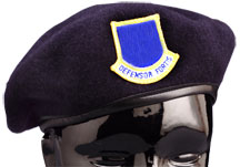 SECURITY FORCES BERET INCLUDES Officer Flash